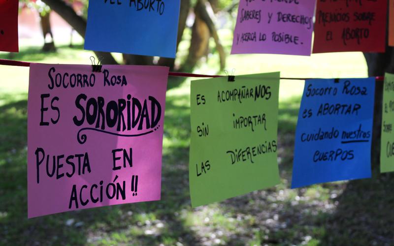 Redes de apoyo: Organizaciones pro y contra el aborto se harán cargo del acompañamiento de mujeres