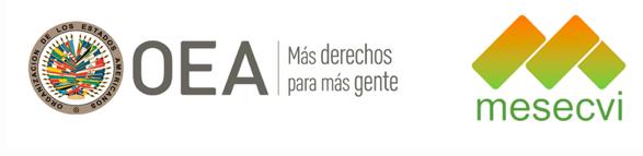 Comité de Expertas lamenta que el Senado rechazara del proyecto de ley para despenalizar el aborto en Argentina